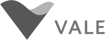 Cliente Vector - Vale